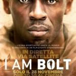 Poster Bolt