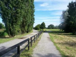 gp-ecorun-parco-vettabbia