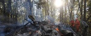 incendi-in-lombardia-