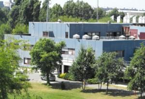 centro vismarA DON GNOCCHI
