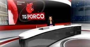 tgporco -gossip guzzanti