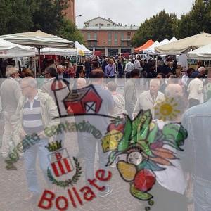 Bollate - mercato contadino