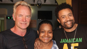 sting-shaggy