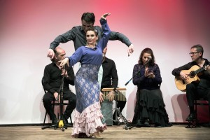 flamenco2_media