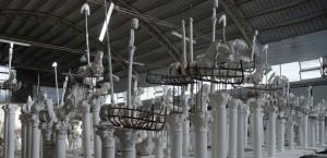 Gustavo Aceves - lapidarium