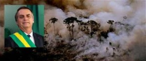 Brasile: Amazzonia in fiamme