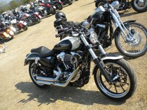 Hills Race_Harley Davidson
