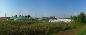 Fiera di Cremona_la svolta green