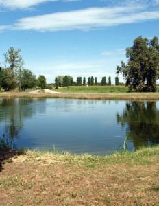 Parco  Vettabbia