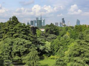 Forestami la campagna di Forestazione nel Comune di Milano e nella Città Metropolitana di Milano.