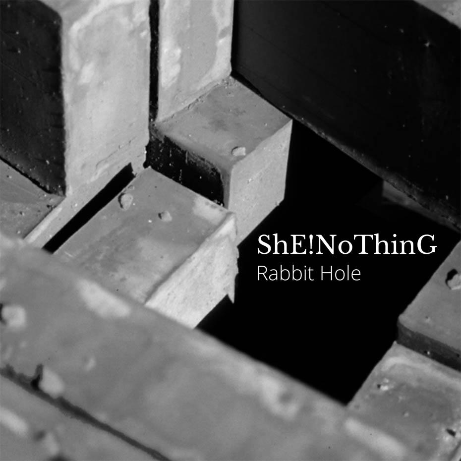 ShENoThinGRabbitHoleCOVERweb