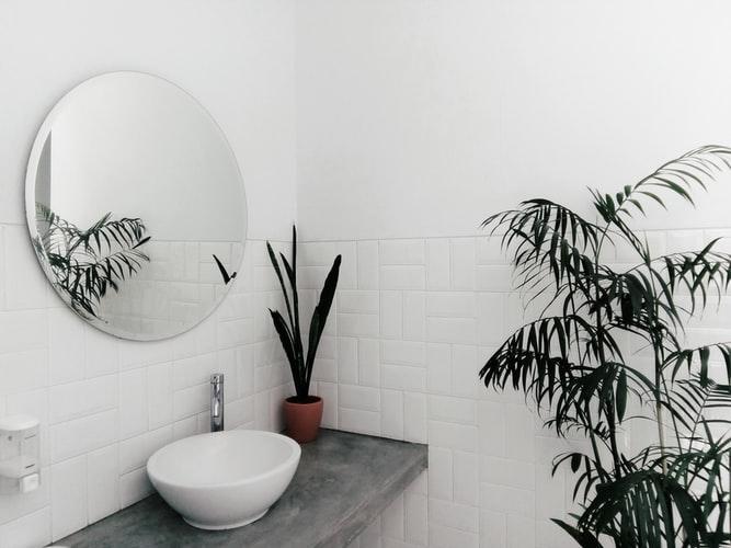 abitudini green casa